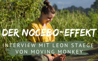 Interview mit Leon von Moving Monkey