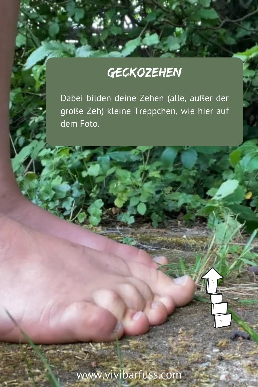 Geckozehen